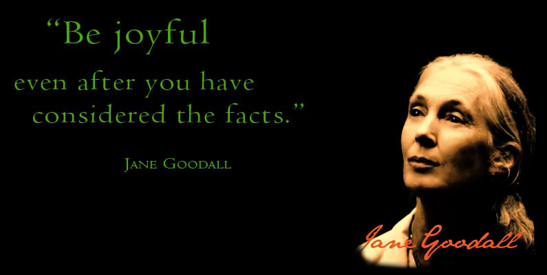 Jane Goodall's quote #5
