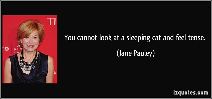 Jane Pauley's quote #4