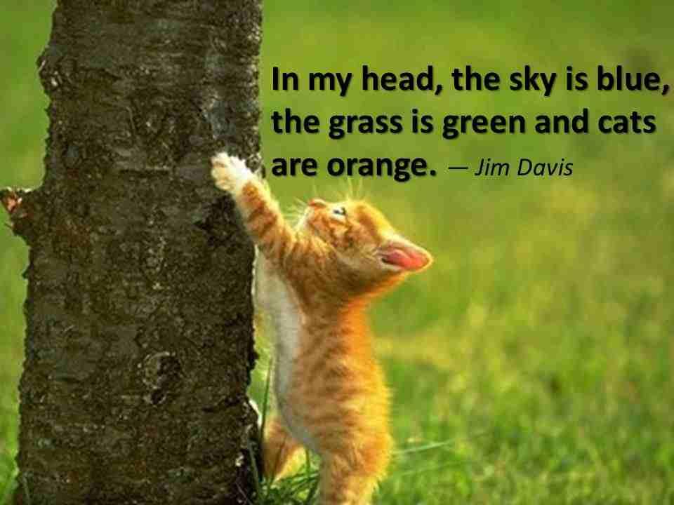 Jim Davis's quote #1