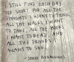 John Burroughs's quote