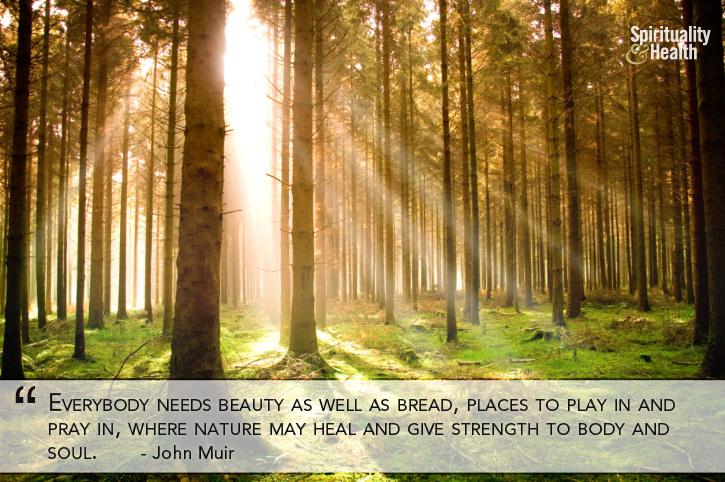 John Muir's quote #5