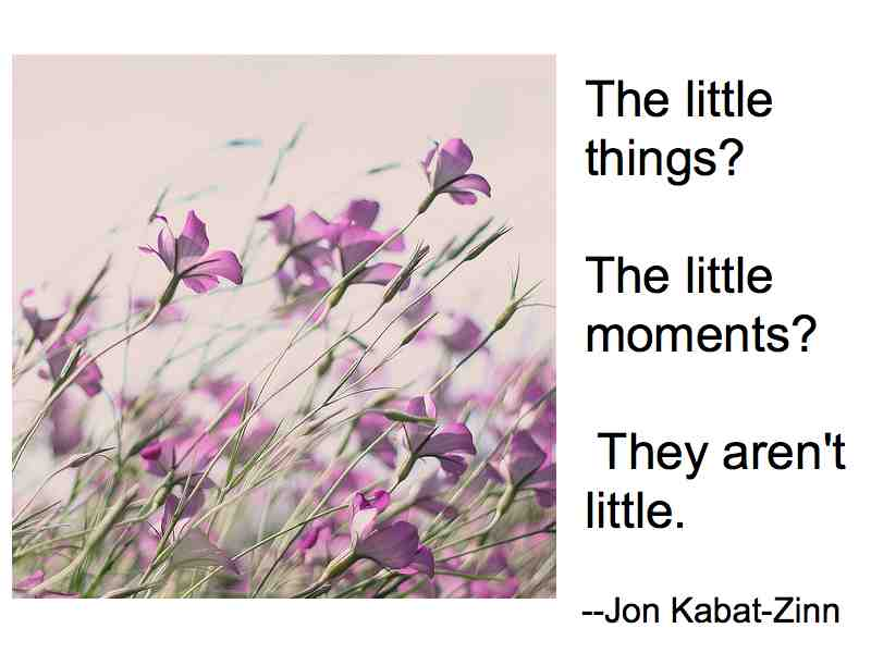 Jon Kabat-Zinn's quote #8