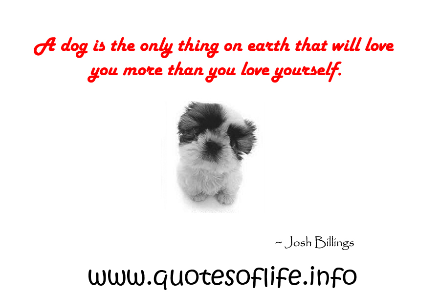 Josh Billings's quote #6