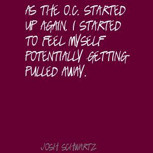 Josh Schwartz's quote #6