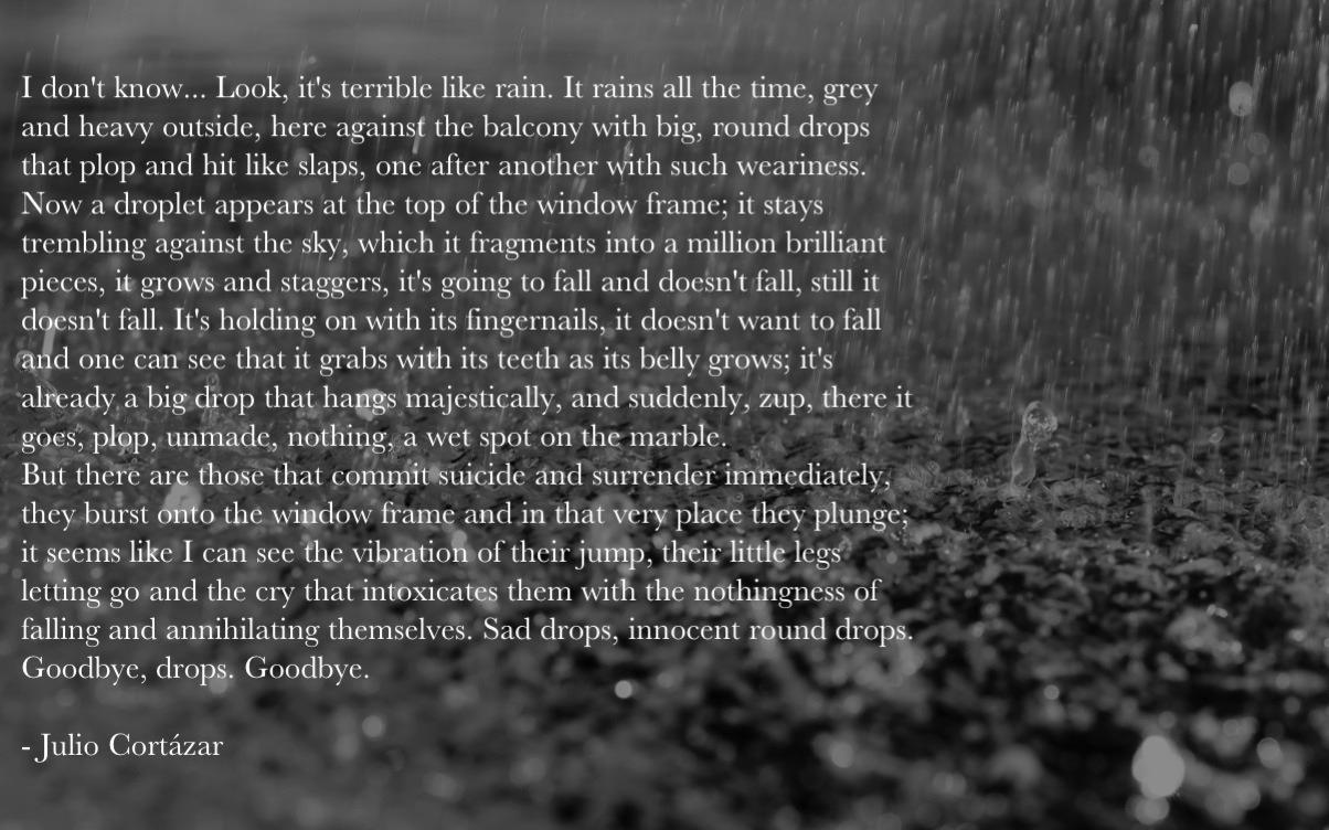 Julio Cortazar's quote #6