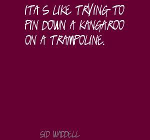 Kangaroo quote