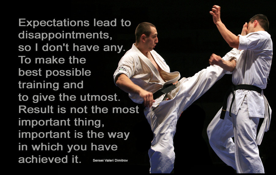 Karate quote #1
