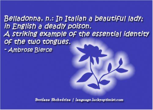 Languages quote #6