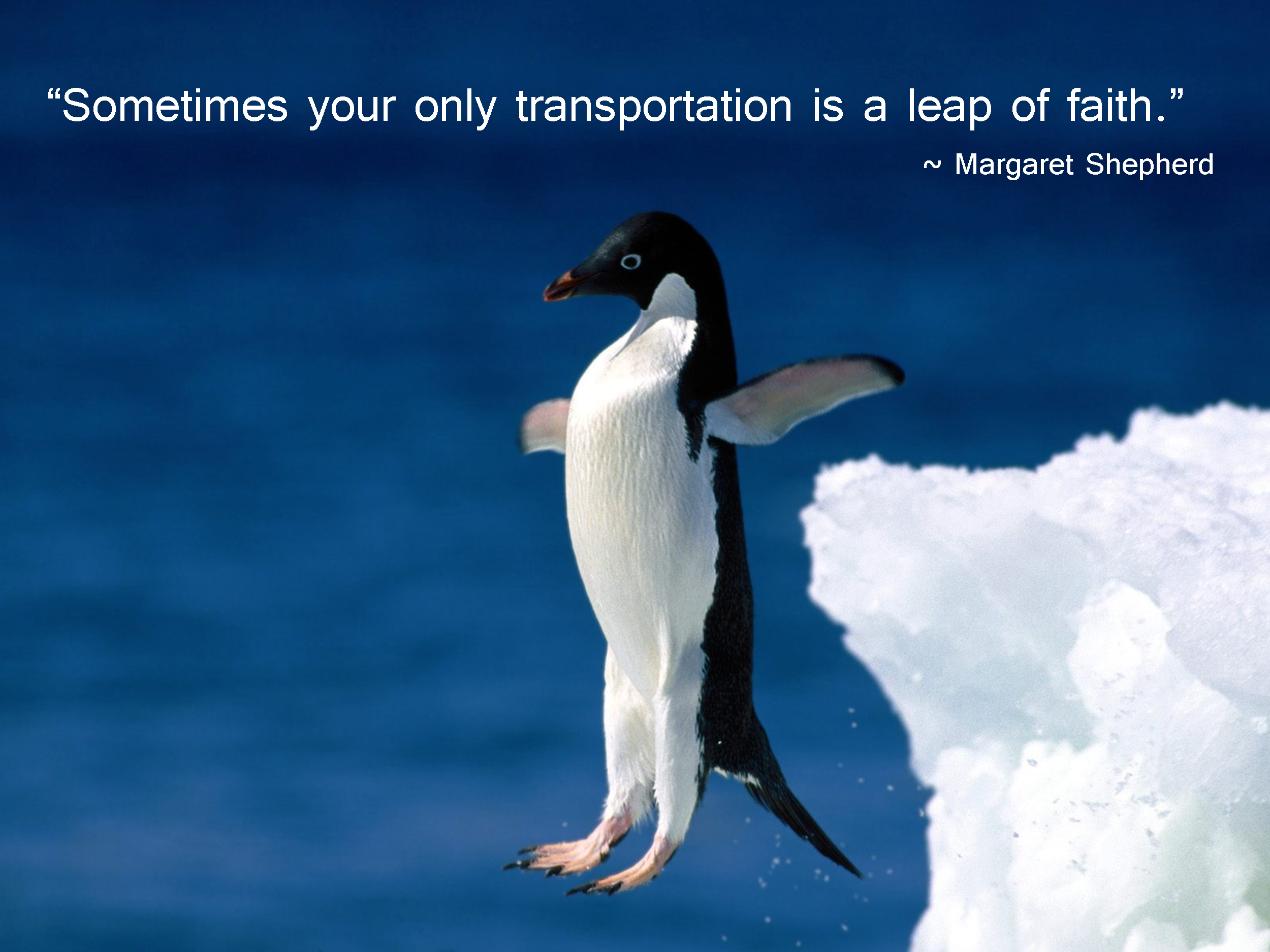 Leap quote #5