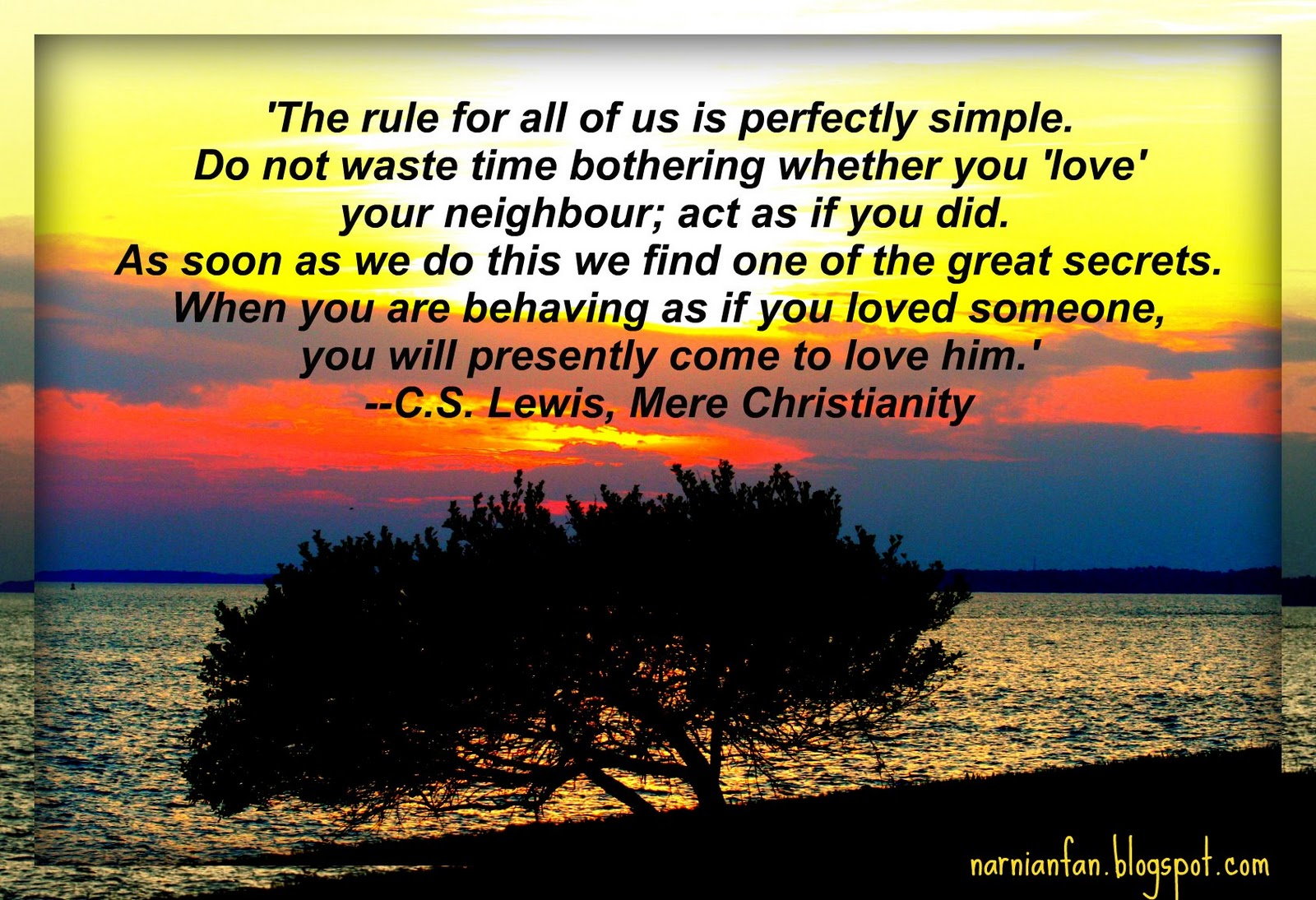 Lewis quote #1