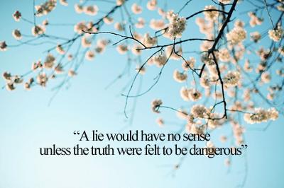 Lie quote #6