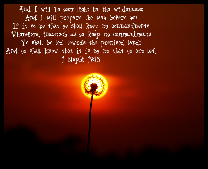 Light quote #7