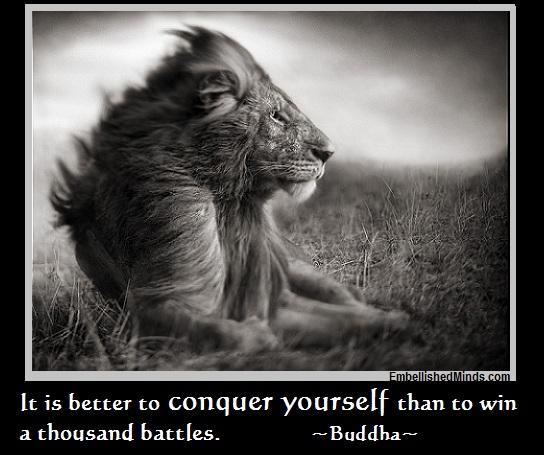 Lion quote #3