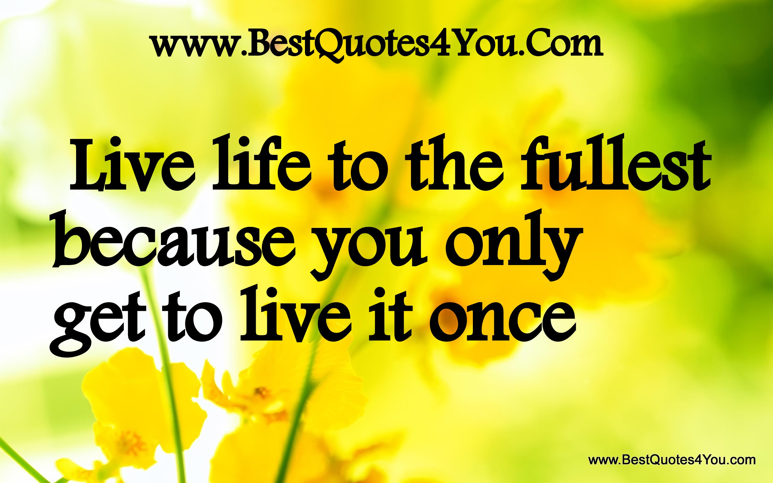 Live Life To The Fullest Quotes Famous Quotes About 'live Life To The Fullest'  Sualci Quotes