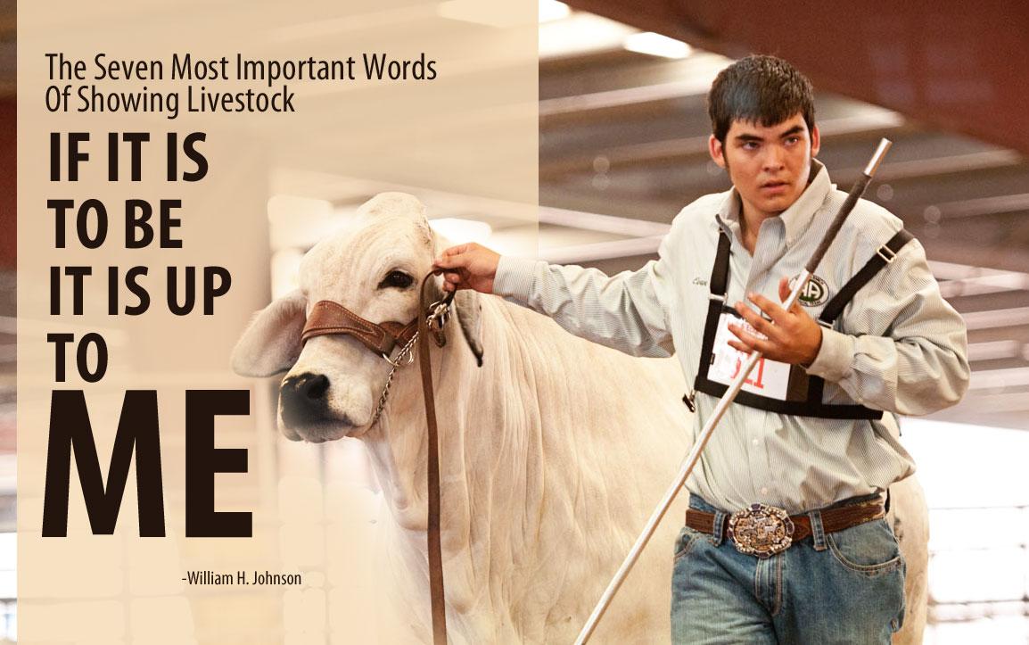 Livestock quote #1