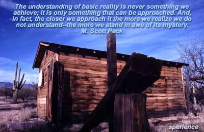 M. Scott Peck's quote #1