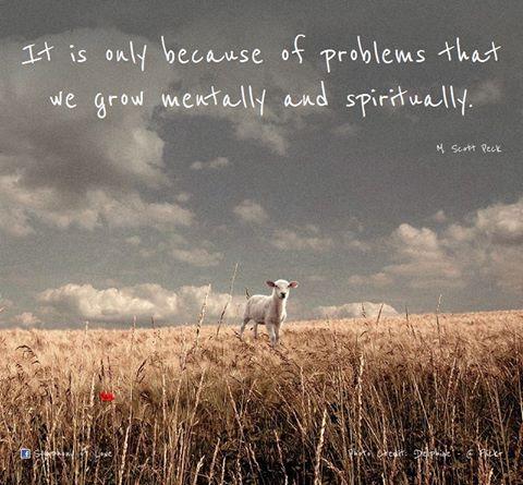 M. Scott Peck's quote #2
