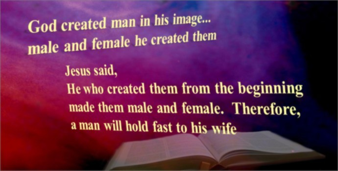 Male quote #7