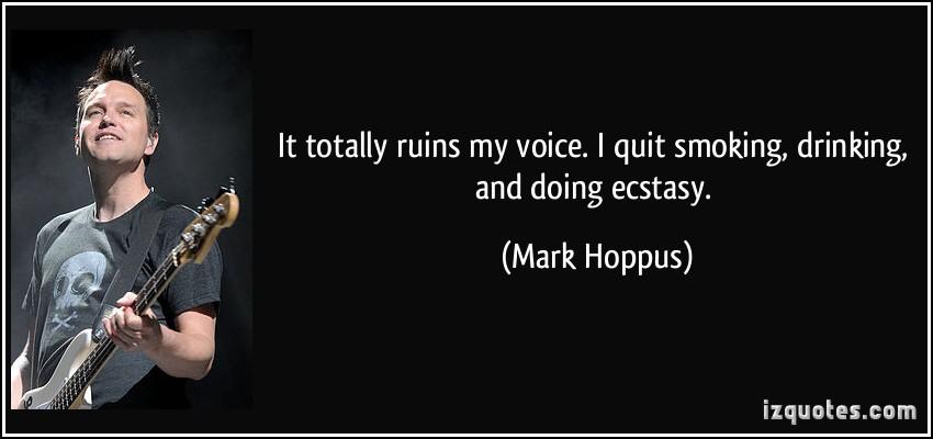 Mark Hoppus's quote #5