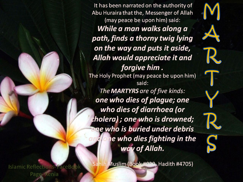 Martyrdom quote #2
