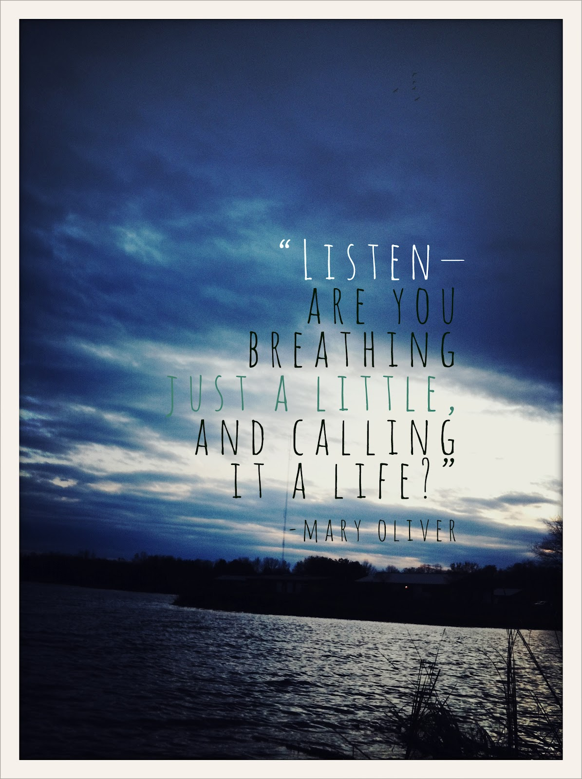 Mary Oliver's quote #8