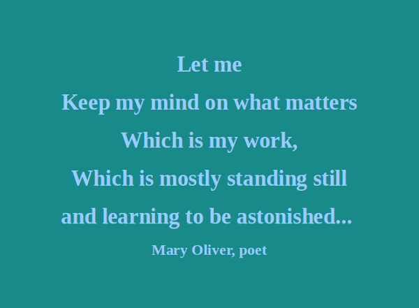 Mary Oliver's quote #5