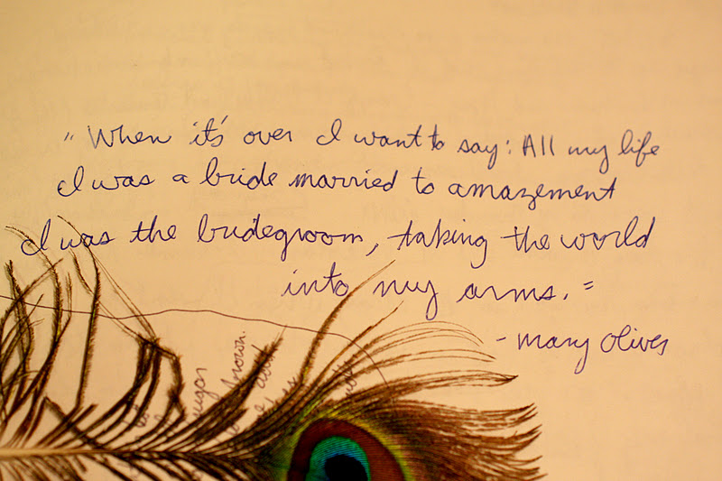 Mary Oliver's quote #6