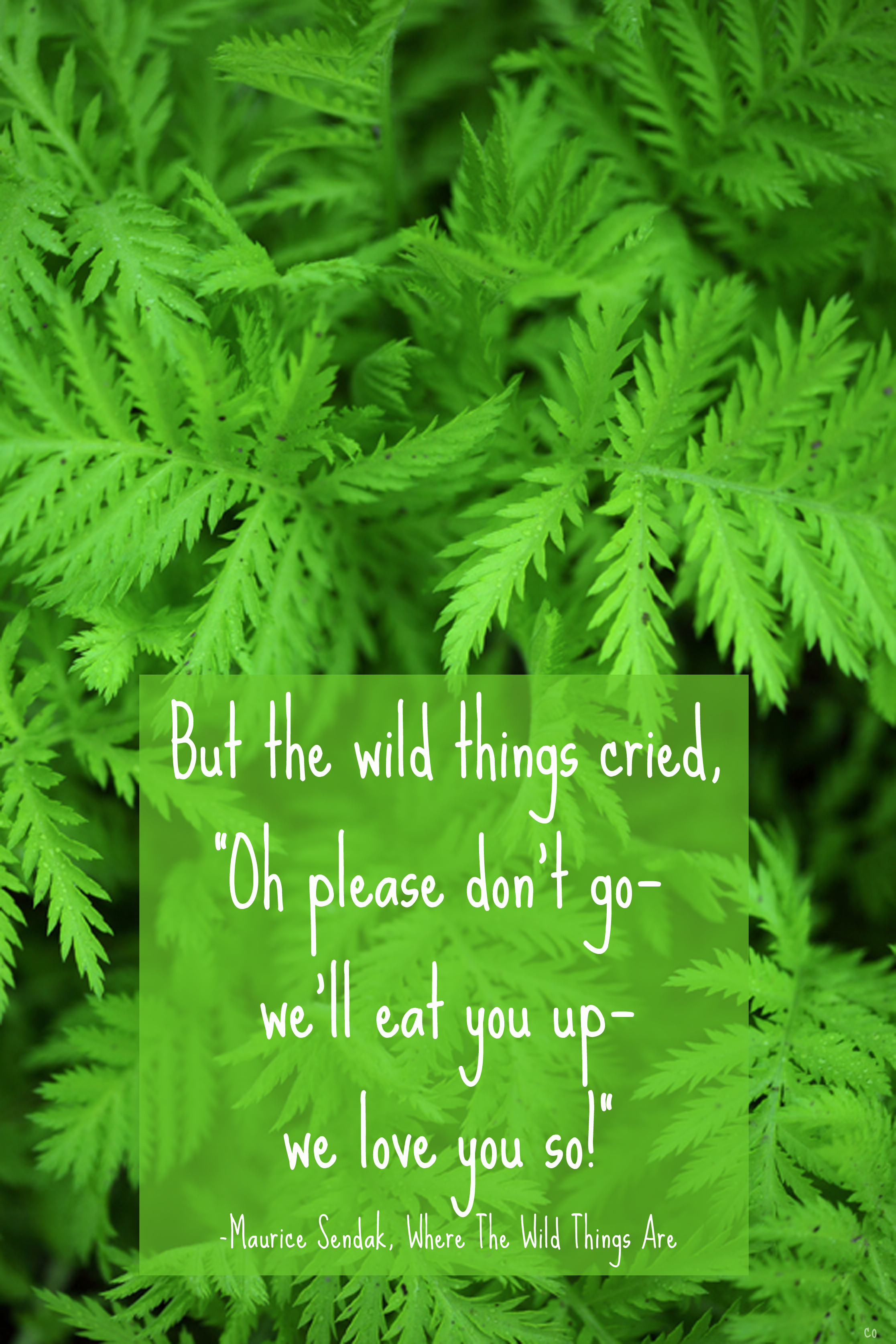 Maurice Sendak's quote #4