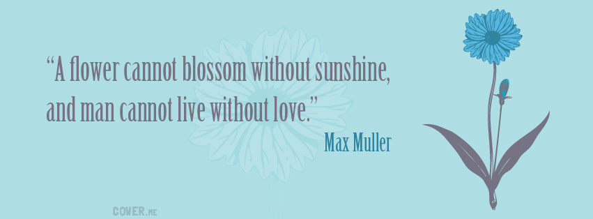 Max Muller's quote #6