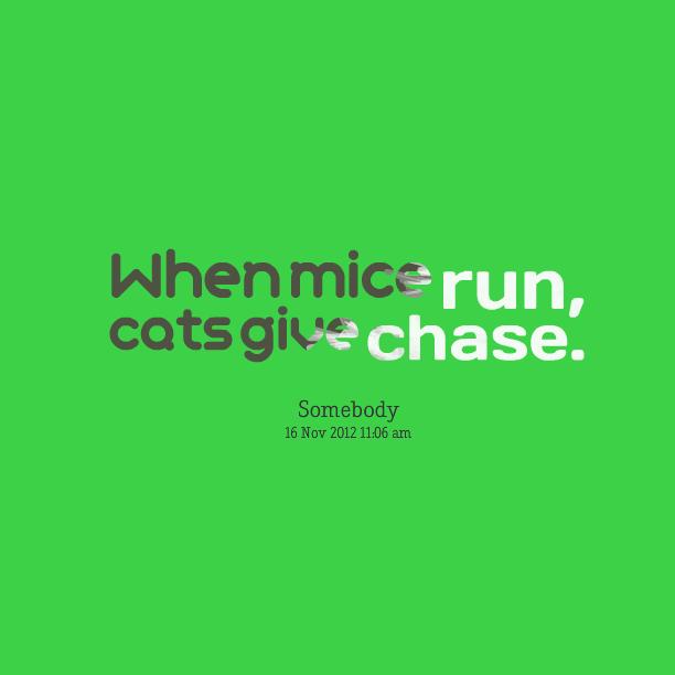 Mice quote #2