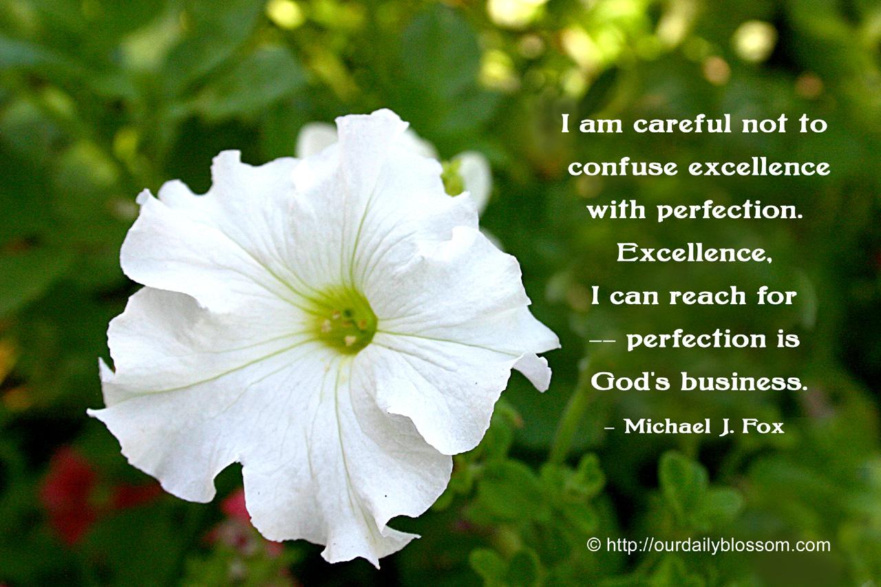 Michael J. Fox's quote #3