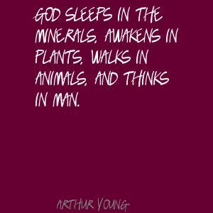Minerals quote
