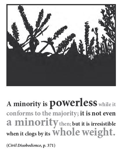 Minority quote #3