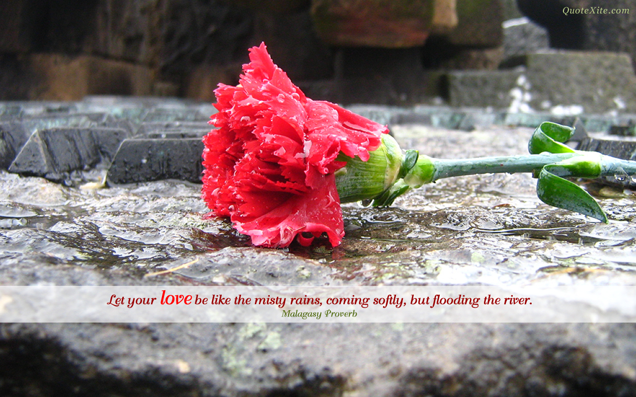 Misty quote #1
