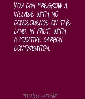 Mitchell Joachim's quote #1