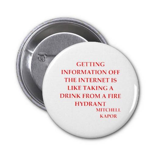 Mitchell Kapor's quote #2