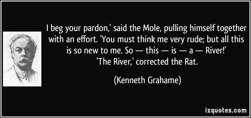 Mole quote #1