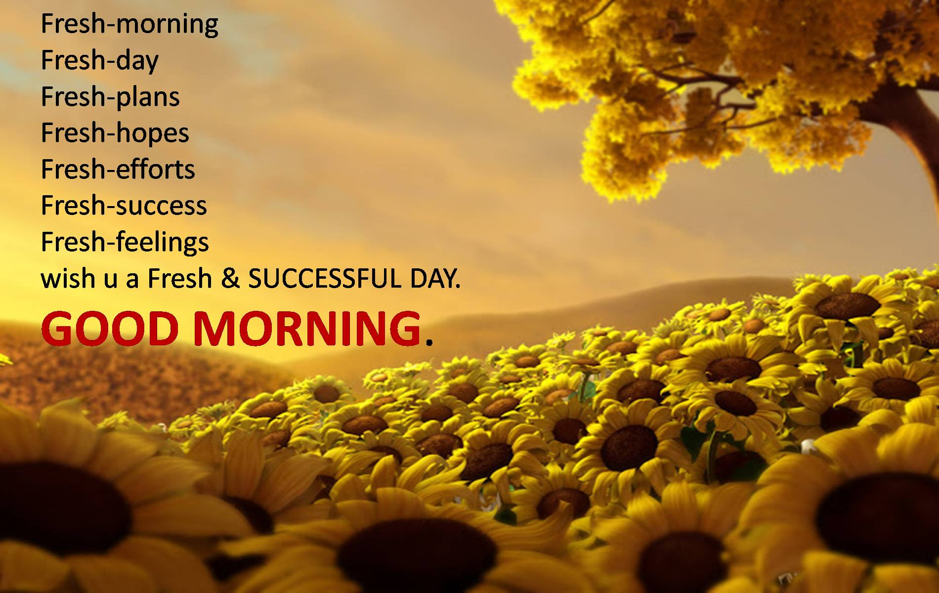 Mornings quote #2