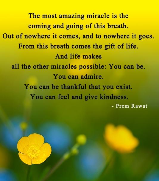 Most Amazing quote #1