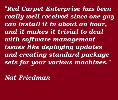 Nat Friedman's quote #3
