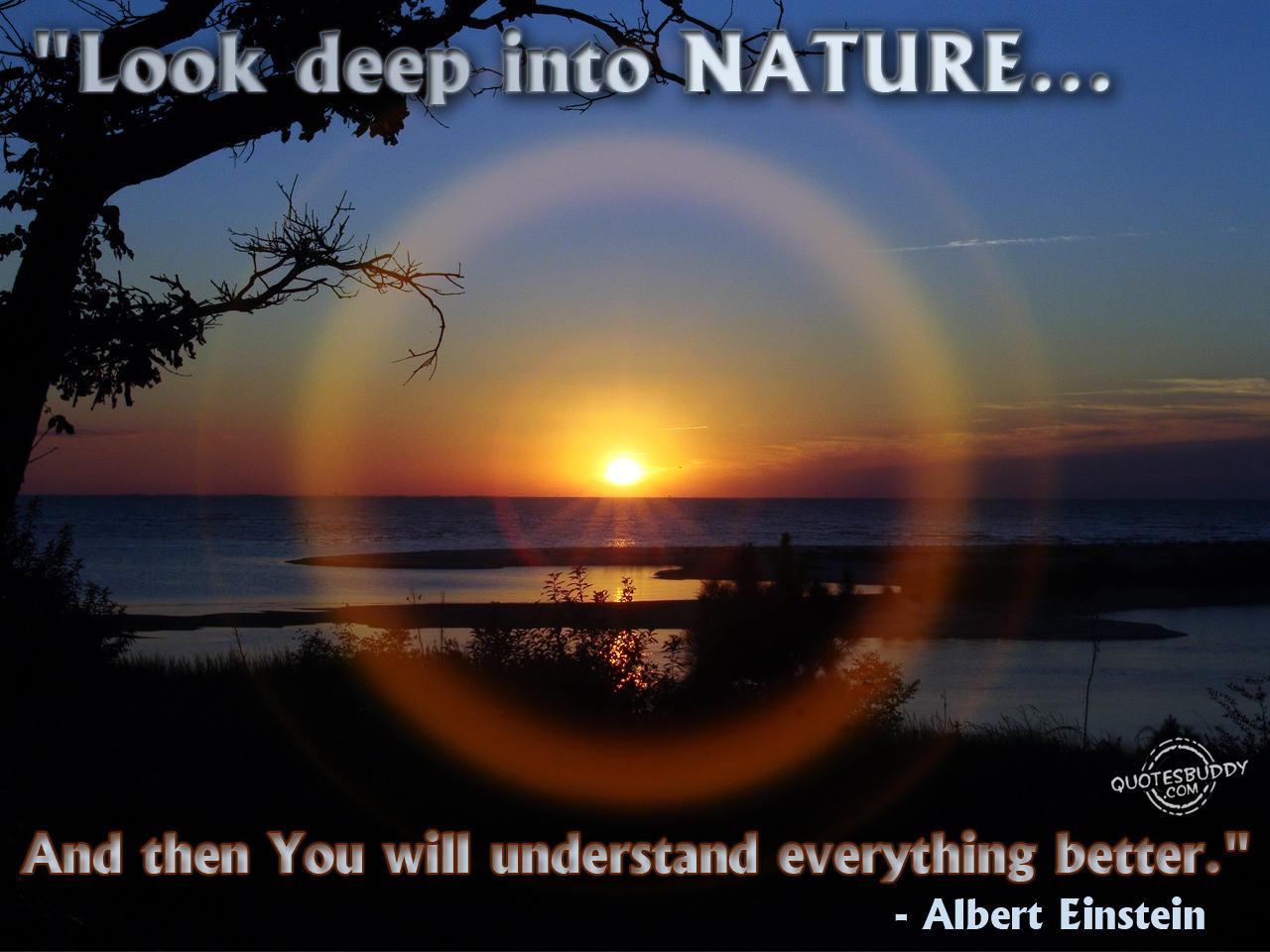 Nature quote #4