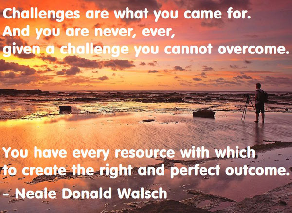 Neale Donald Walsch's quote #6
