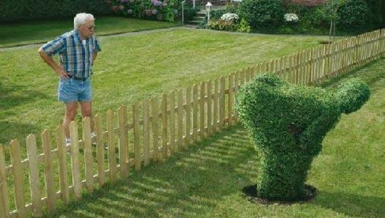 Neighbor quote #5