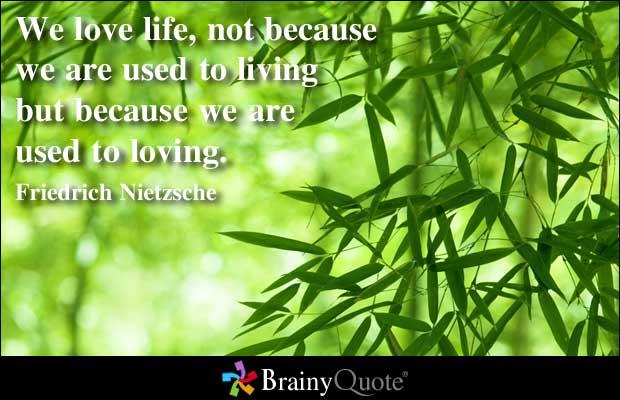 Niche quote #2