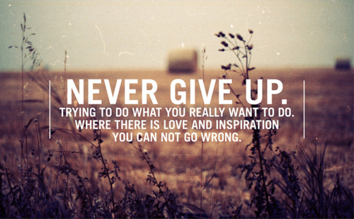 Not Giving Up quote #2