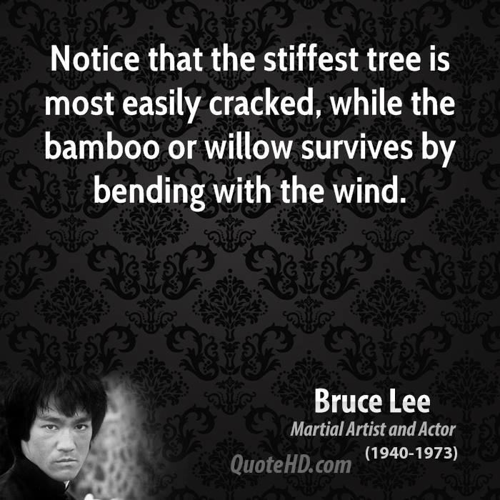 Notice quote #3