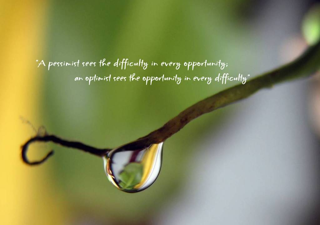 Optimist quote #5