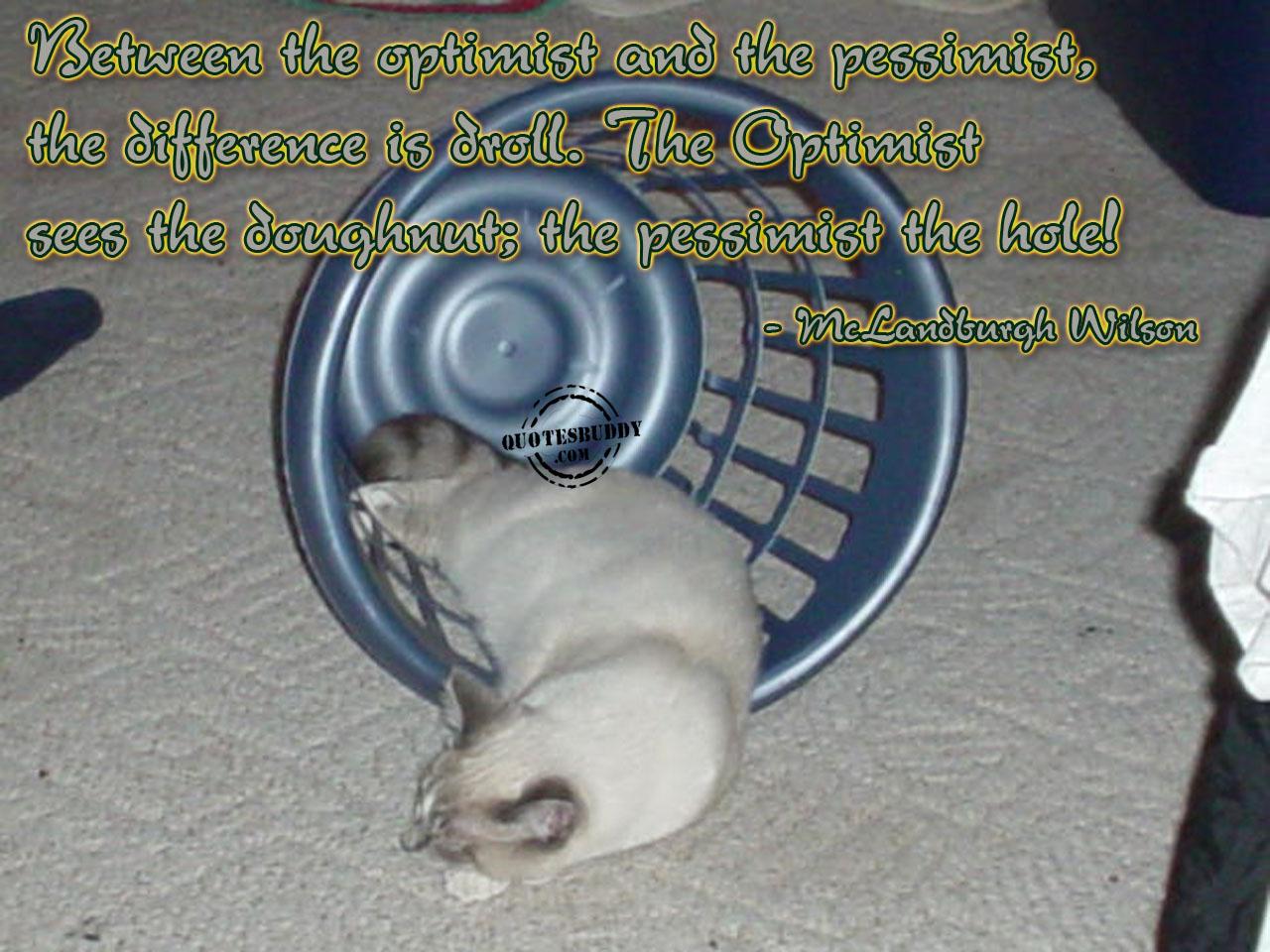 Optimist quote #2