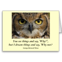 Owls quote #2