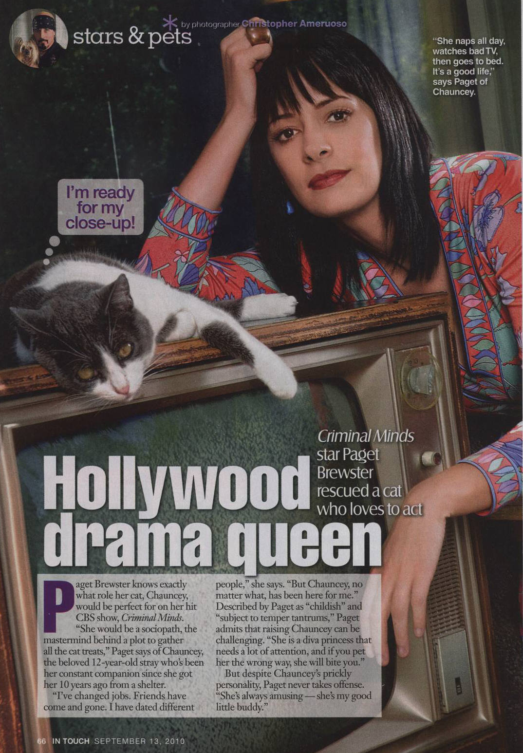 Paget Brewster's quote #8